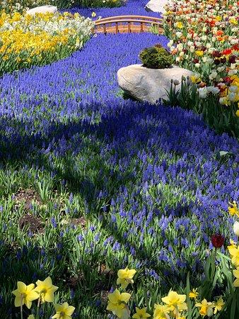 Secret Garden Picture Of Grand Hotel Mackinac Island Tripadvisor