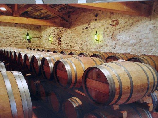 Saint-Philippe-D'Aiguille, ฝรั่งเศส: Le chai à barriques @chateauroquevieille