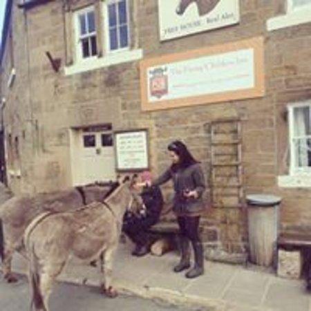 The Flying Childers Inn: Donkeys at the pub