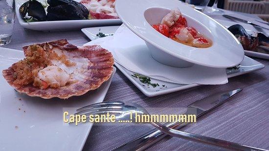 Voce del Mare: Cape sante