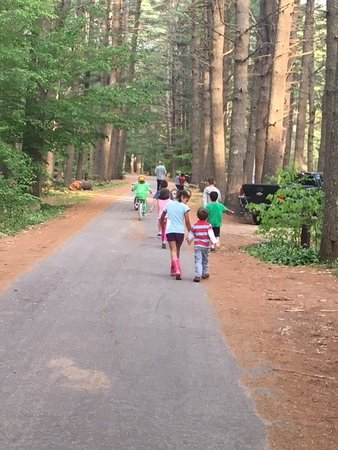 Bear Brook State Park (Allenstown) - 2019 All You Need to Know ... on hiking map, bear brook trail race, dogtown gloucester ma bike trail map,