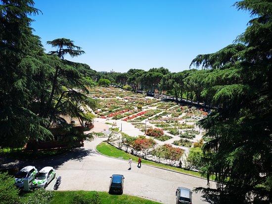 Teleferico de Madrid: View of rose garden from gondola