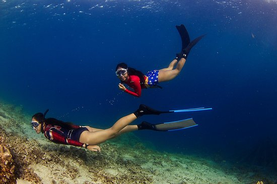 Freediving Society