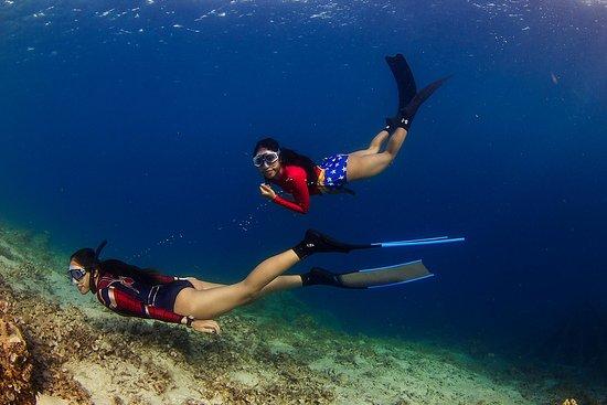 Freediving Society