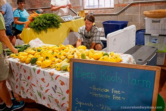 Harbor District Market: Deep Roots