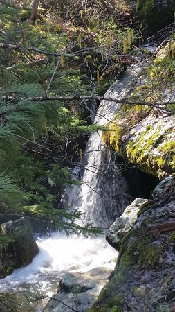 Black Hills Above and Beyond Tours: Waterfall