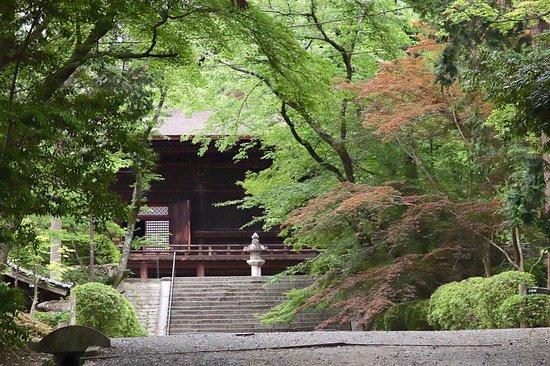 Mii-dera Temple Kojoin Garden