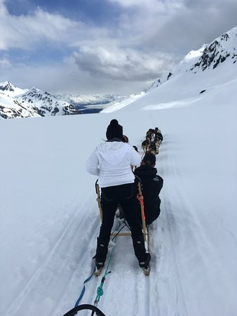 Snowhook Adventure Guides of Alaska: On the Move!