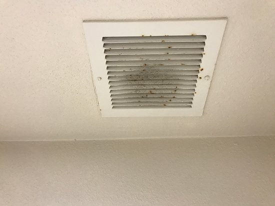 Mold on ceiling register vent