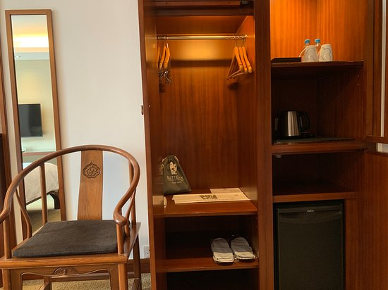 Butterfly on Wellington - chair, closet, fridge and kettle