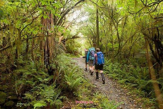Vandring Trekking & Temple Stay...