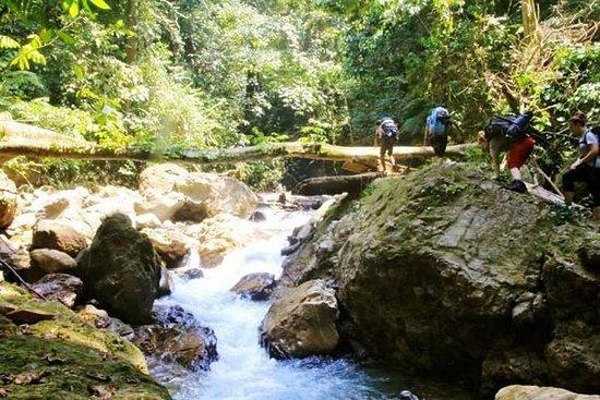 Sobrevivência na selva de cinco dias, particular: Five-Day Jungle Trekking For School, Group/Private