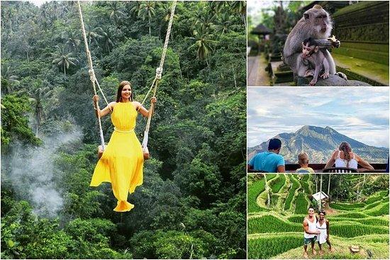 Jungle Swing - Volcano - Templo del...
