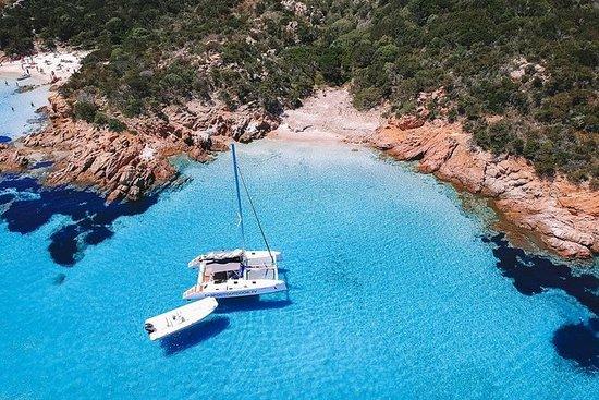 Excursión en barco por el...