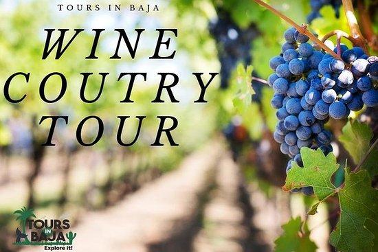 Tour a la región vinícola del Valle...