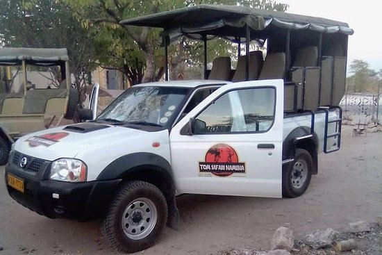 (1/2 day) Discovery of Etosha Park in...