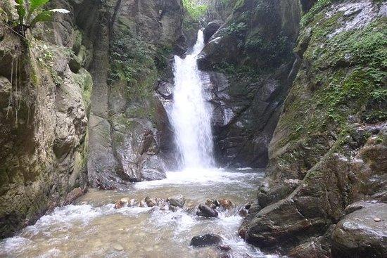 Caminata ecológica a la Cascada El...