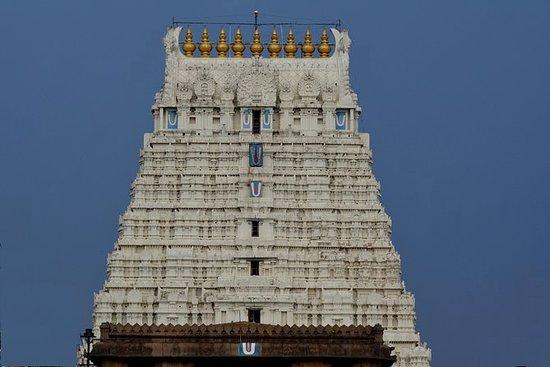 Kanchipuram Athi Varathar Raising 2019 - 1 day visit: Kanchipuram Athi Varathar Raising 2019