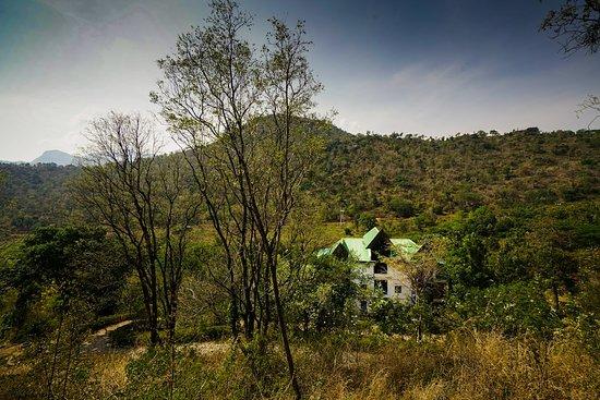 Landscape - Picture of OYO 13684 Kerala for Rest Inn, Munnar - Tripadvisor