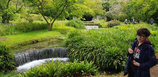 La meraviglia di questi giardini