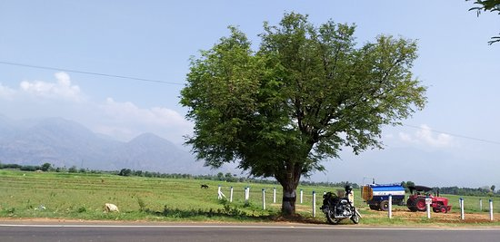 Tenkasi, Indien: on the way