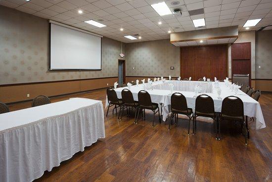 Holiday Inn Alexandria: Meeting room