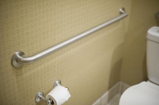 Holiday Inn Hotel & Suites St. Paul NE - Lake Elmo: Guest room amenity