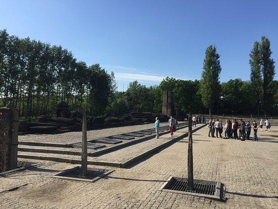 Auschwitz-Birkenau Camp Full-Day Guided Tour from Krakow: The memorial at Birkenau.
