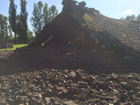 Auschwitz-Birkenau Camp Full-Day Guided Tour from Krakow: The remains of the Gas chamber and crematoria in Birkenau.