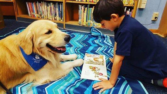 ฟินแลนด์: ITI MALIA: Cães que auxiliam na leitura Existem cães que ajudam pessoas cegas, e na Finlândia há também cães especiais que ajudam as crianças a dominarem facilmente a língua finlandesa.