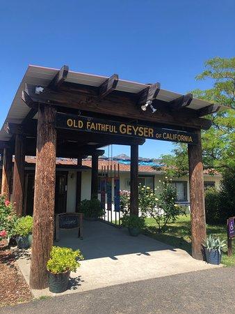Old Faithful Geyser of California Image