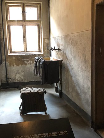 Auschwitz-Birkenau Memorial and Museum Guided Tour from Krakow: One of the cleansing rooms