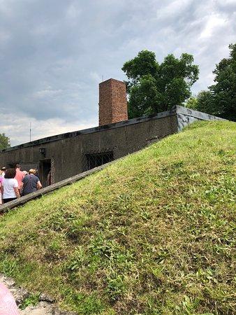 Auschwitz-Birkenau Memorial and Museum Guided Tour from Krakow: Crematorium