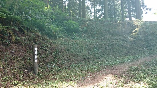 Masuyama Castle Ruins: 石垣跡
