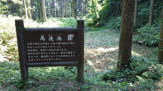 Masuyama Castle Ruins: 馬洗池