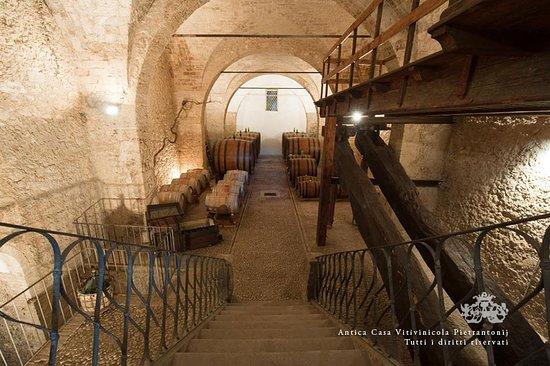 Antica Casa Vitivinicola Italo Pietrantonj