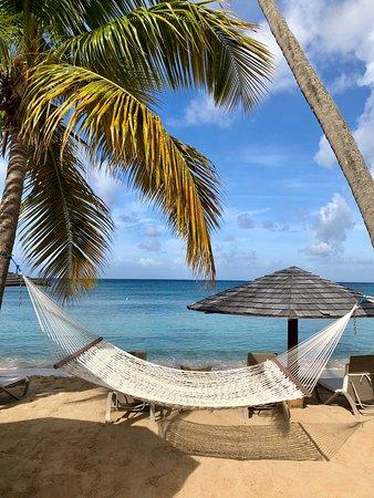 Curtain Bluff Resort: Hammocks by the beach.