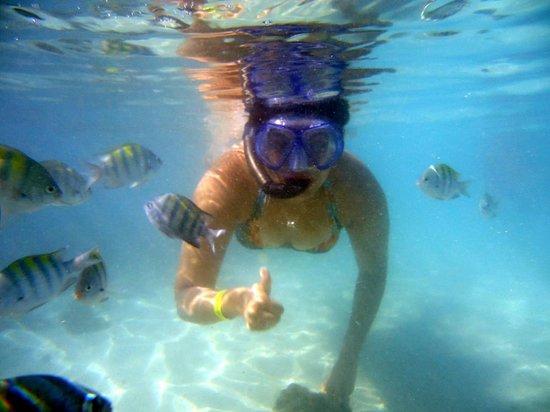 Agencia e Receptivo Corais do Maragogi Turismo