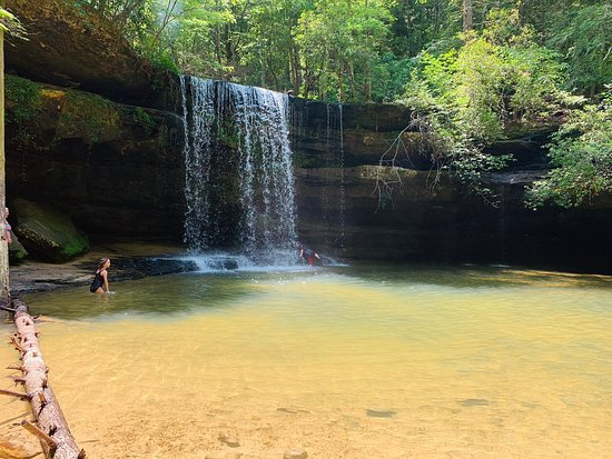 William Bankhead National Forest (Double Springs) - 2019 Book in