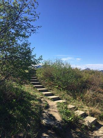 Beautiful views and comfortable hiking