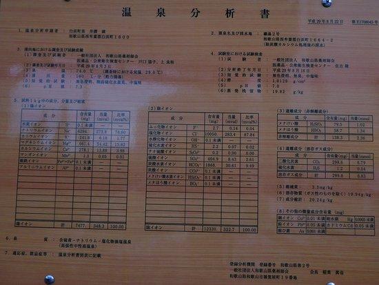 Tsukumoto Ashiyu: 成分分析書