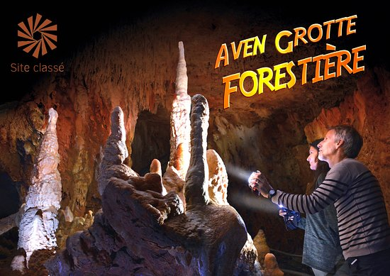 Aven Grotte Forestiere