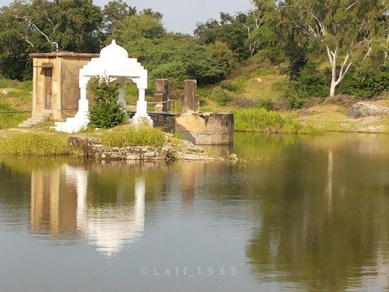Rajsamand District, อินเดีย: Chhapli