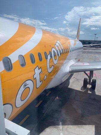 Scoot: My plane