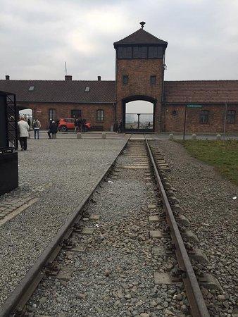 Auschwitz-Birkenau Memorial and Museum Guided Tour from Krakow: Auschwitz-Birkenau