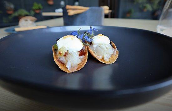 Ristorante Saur: I tacos: carpaccio di luccio, lumache e gelato al sambuco