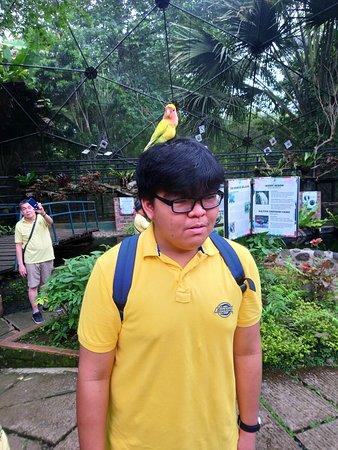 It's on his head