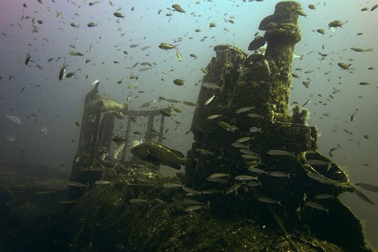 Exploration sur l'Epave du Rubis - Port Fréjus Plongée