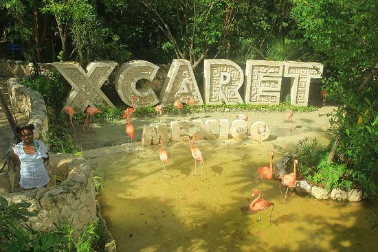 Эко-тематический парк Xcaret: Xcaret Park