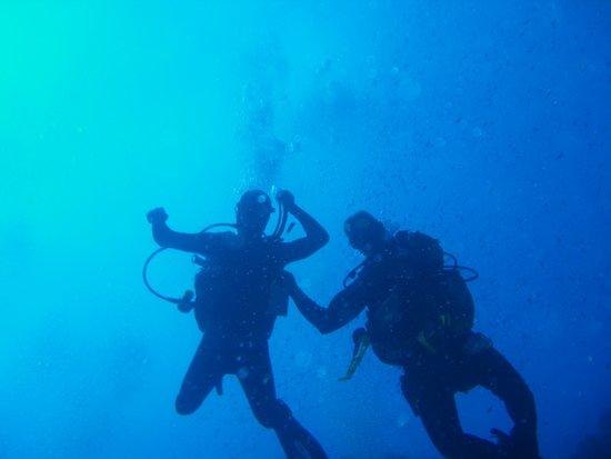 immergersi all' elba e' un esperienza sicuramente imperdibile per gli amanti di questo sport